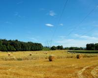 paesaggi2.jpg